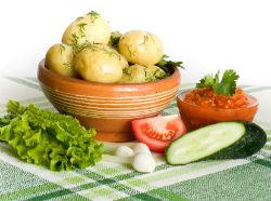 shape-new-foods