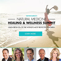 wellness-summit
