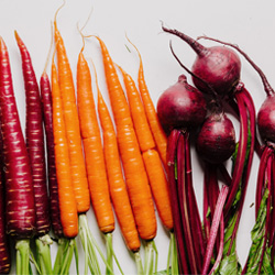 organic foods including carrots