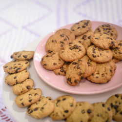 flourless peanut butter chocolate chip cookie on plate
