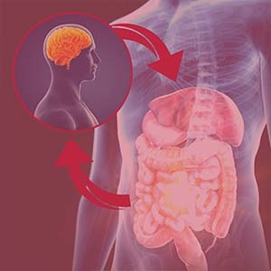 mental wellness and the gut-brain connection